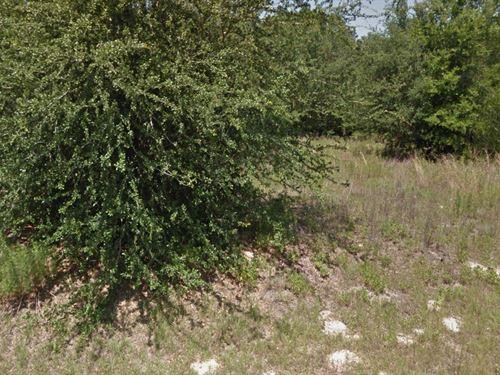 Marion Co, Fl .46A, 125K, Neg : Dunnellon : Marion County : Florida