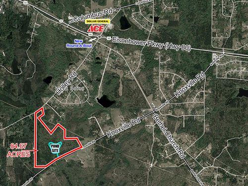 84.67 Acres Lizella, Ga : Lizella : Bibb County : Georgia