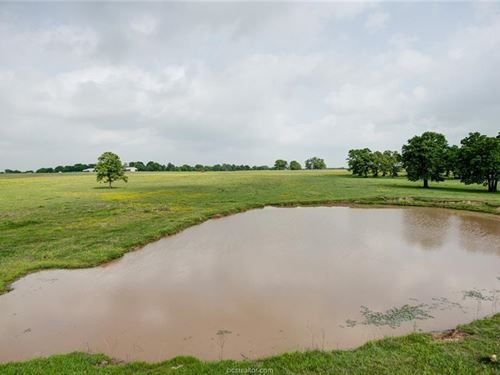 17433 Osr, Midway 75852 : Midway : Madison County : Texas