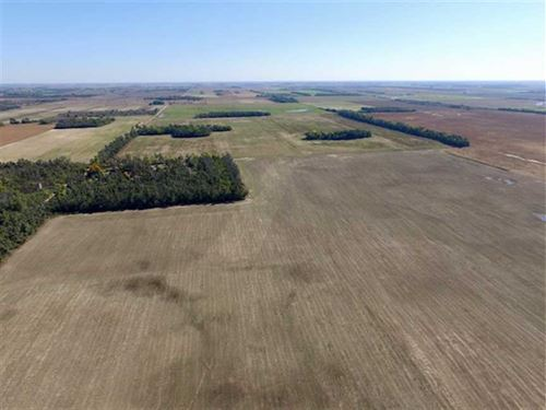 160 Acres of Tillable Land : Saint John : Stafford County : Kansas