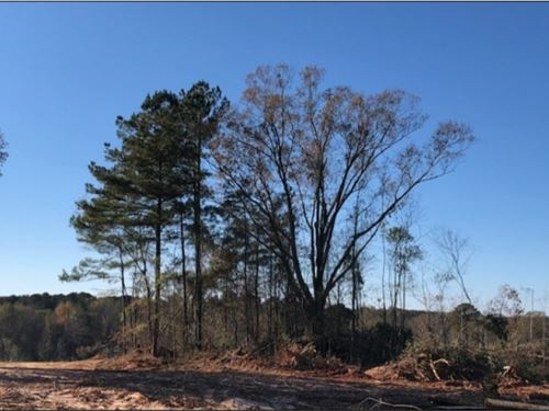 65 Acres In Neshoba County In Phila : Philadelphia : Neshoba County : Mississippi