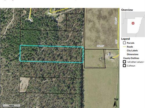 Private 10 Acres Calhoun County : Altha : Calhoun County : Florida