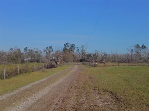 Dock Road Farm : Cottondale : Jackson County : Florida