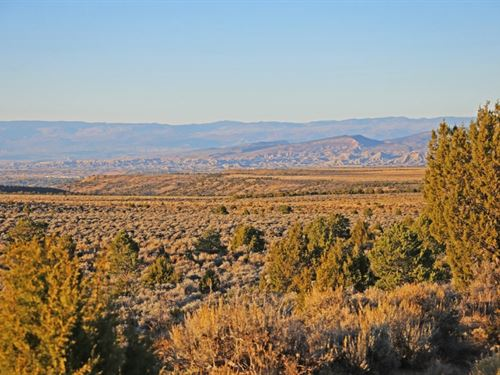 Happy Canyon Ranch : Montrose : Colorado