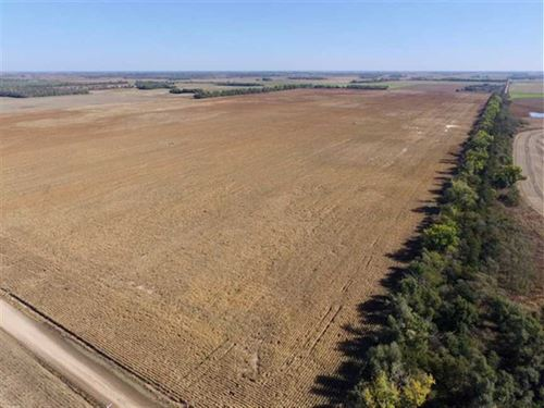 160 Acres of Tillable And Great : Saint John : Stafford County : Kansas