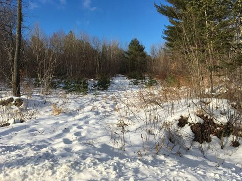 Investment Land Property Garland : Garland : Penobscot County : Maine