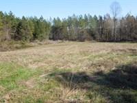 Lea Family Trust Tract : Milton : Caswell County : North Carolina