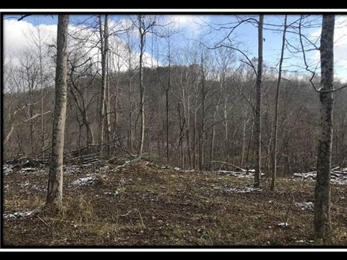10 Acre Leeth Creek : Waverly : Pike County : Ohio