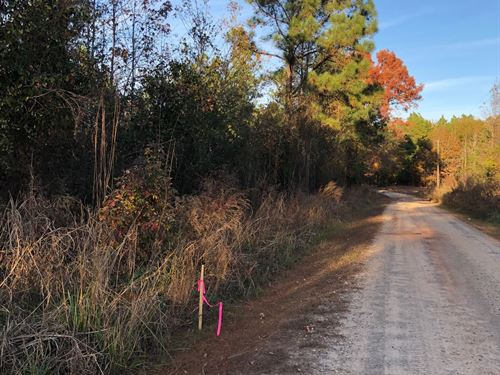 Jordan Rd At Goolsby Rd Lot-E : Monticello : Jasper County : Georgia
