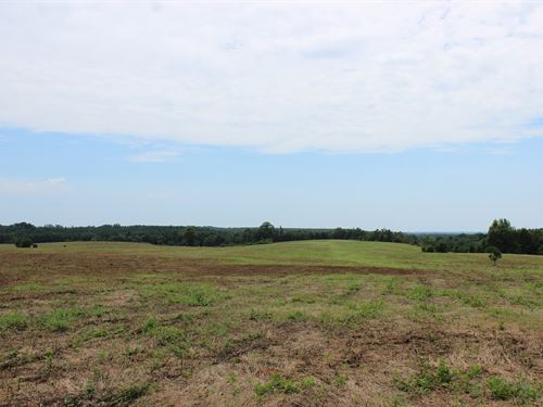 Openland Suitable For Rowcrop Or Pa : Buena Vista : Marion County : Georgia