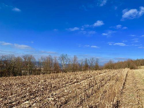 10 +/- Acres, Panoramic Views : Millville : Columbia County : Pennsylvania