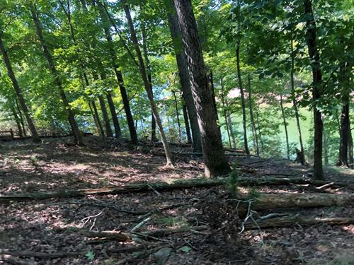 Lake Front Lot Gated Community : Mooresburg : Hawkins County : Tennessee