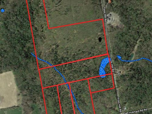 Land For Sale in Garland, Maine : Garland : Penobscot County : Maine