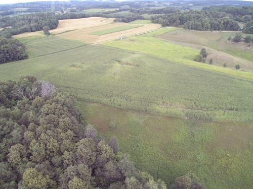 Excellent Deer And Turkey Hunting : Hixton : Jackson County : Wisconsin