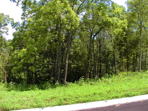 Turners Landing Building Lot : Russellville : Hamblen County : Tennessee