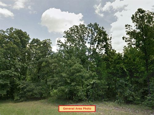 Beautiful Lot In Friendly Town : Buchanan : Henry County : Tennessee