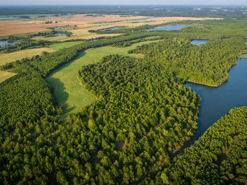 Dragoo Creek Ranch West : Mount Pleasant : Titus County : Texas