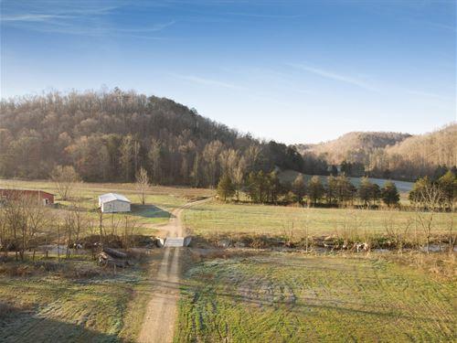 218 Acres Central : Liberty : Casey County : Kentucky