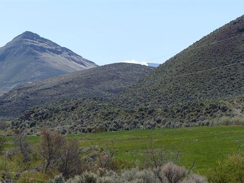 Olson Ranch Cottonwood Creek Fields : Fields : Harney County : Oregon