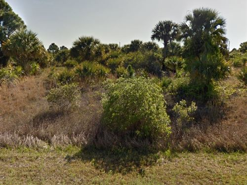 Brevard, Fl .23A, 20K, Nego : Palm Bay : Brevard County : Florida