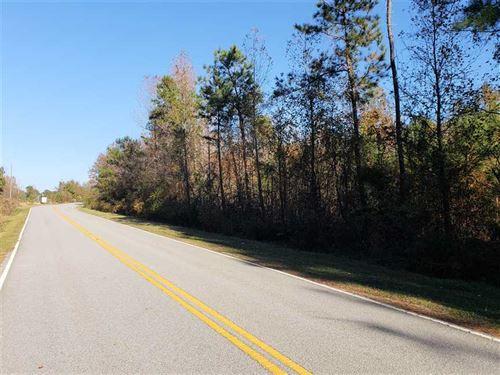 13 Acres in Latta, Dillion Coun : Latta : Dillon County : South Carolina