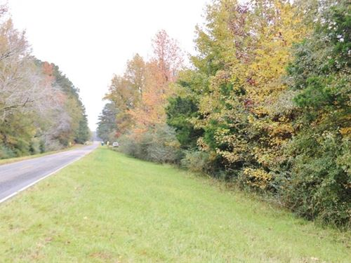 30.5 Acres Land For Sale Meridian : Meridian : Lauderdale County : Mississippi