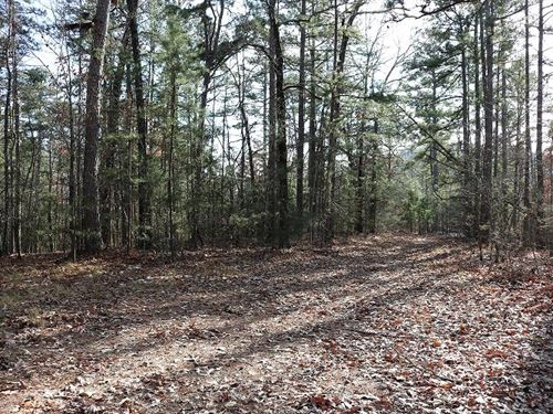 Acreage For Sale In Melbourne, AR : Melbourne : Izard County : Arkansas