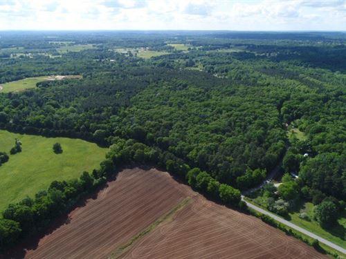 150 AC White Oak Pine : Decatur : Morgan County : Alabama