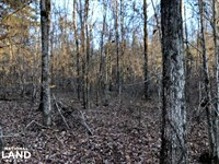 Madison County Recreational Deal : Pickens : Madison County : Mississippi