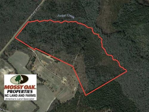 86 Acres of Hunting Land For Sale : Laurinburg : Scotland County : North Carolina