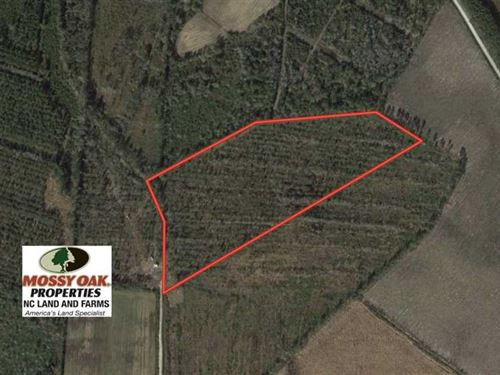 Under Contract, 20 Acres of Hunti : Tabor City : Columbus County : North Carolina