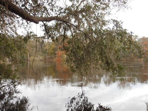 Beautiful Lot Quiet,Private : Live Oak : Suwannee County : Florida