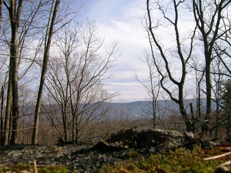 Scenic Bluff Lot For Sale : Pikeville : Bledsoe County : Tennessee