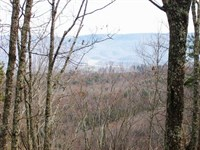 Bluff Lot With Panoramic Views : Pikeville : Bledsoe County : Tennessee