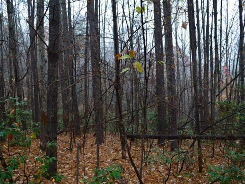 Over 2.5 Acre Lot Located In Jocass : Salem : Oconee County : South Carolina
