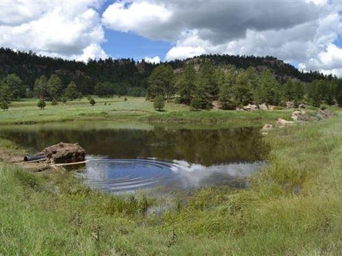 Go With The Flow : Cripple Creek : Teller County : Colorado