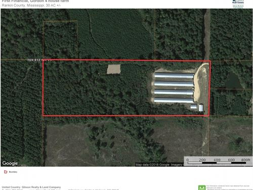 4 Broiler House Poultry Farm : Pelahatchie : Rankin County : Mississippi