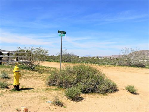 Superb 5 Ac, Power And Water : Landers : San Bernardino County : California