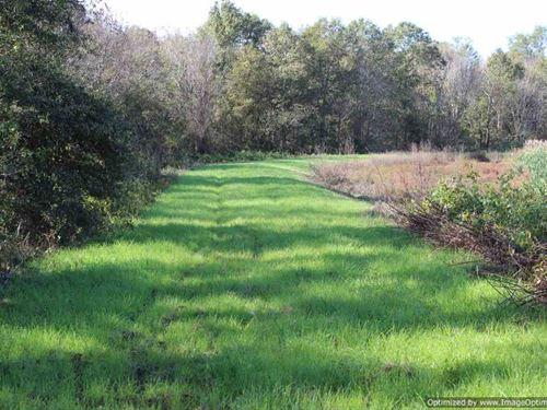 Ms Delta Tract : Itta Bena : Leflore County : Mississippi