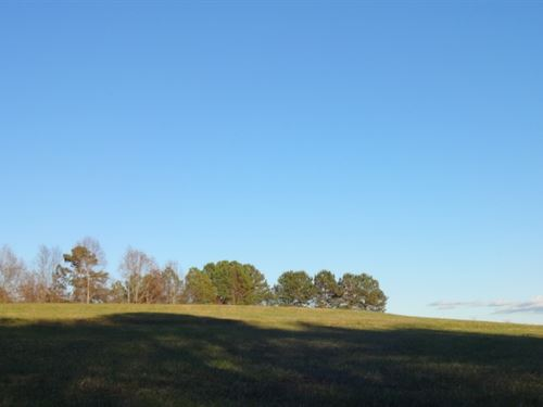9.83 Acres Open Pasture With Views : Pickens : South Carolina