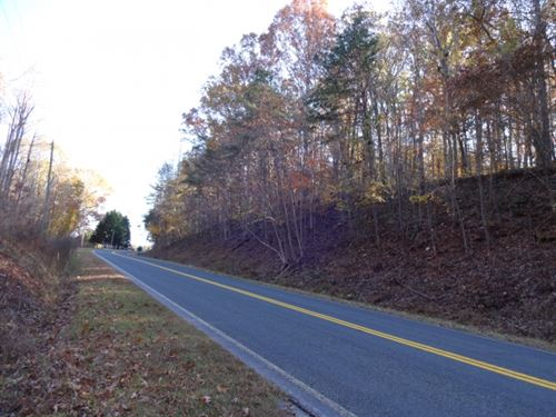 54.22 Acres Wooded Acreage With Cre : Westminster : Oconee County : South Carolina