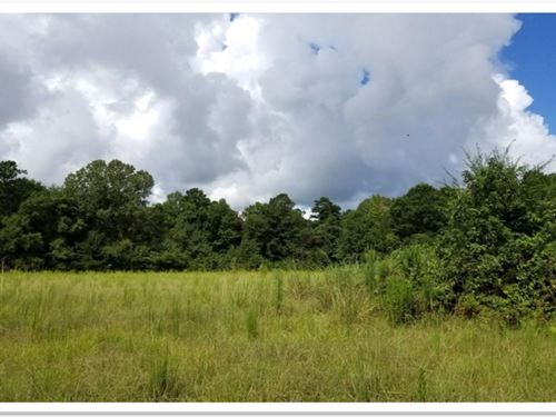 5.33 Acres In Pike County In Summit : Summit : Pike County : Mississippi
