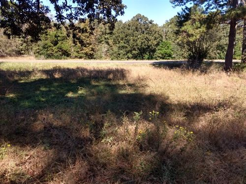East TX Land, Small Acreage : Grapeland : Houston County : Texas