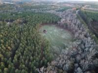 Beautiful 26 Ac Minifarm With Creek : Standing Rock : Chambers County : Alabama
