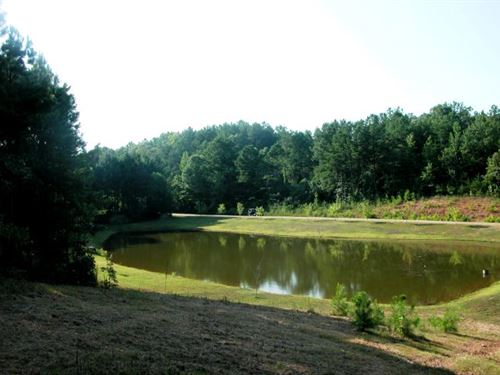 27 Acres With 2 Acre Stocked Lake : Delta : Clay County : Alabama