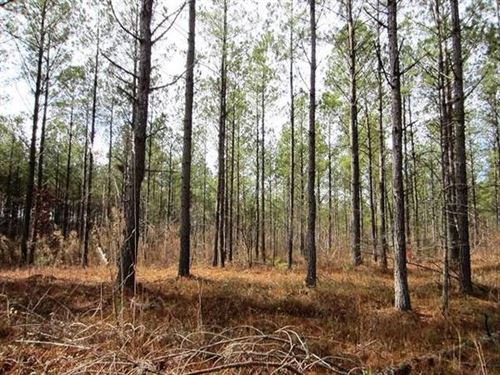 10 Acres In Lineville : Lineville : Clay County : Alabama