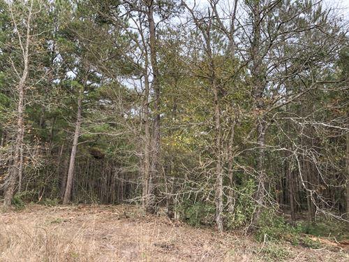 10 Acres Spencer Road One : Groveton : Trinity County : Texas