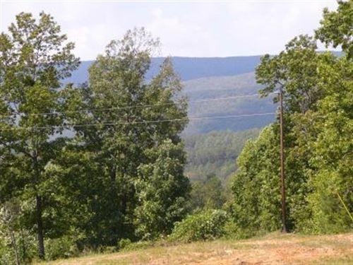 25 Acres In Delta With Creek : Delta : Clay County : Alabama