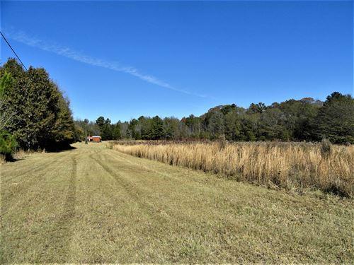 Chapman Grove Minifarm : Pelzer : Greenville County : South Carolina