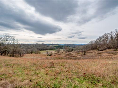 Beautiful 145 Acre Farm : Columbia : Maury County : Tennessee